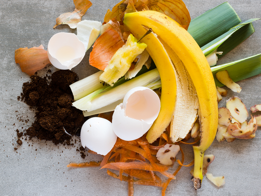 Easy DIY Home Compost
