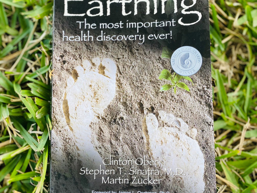 Recommended Books- Earthing!