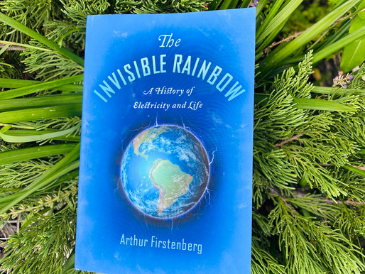 Recommended Books- The Invisible Rainbow