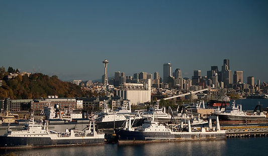 Robert Shawn Griggs Attorney Law Seattle