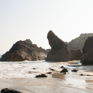Notes from Lizard Point Residency