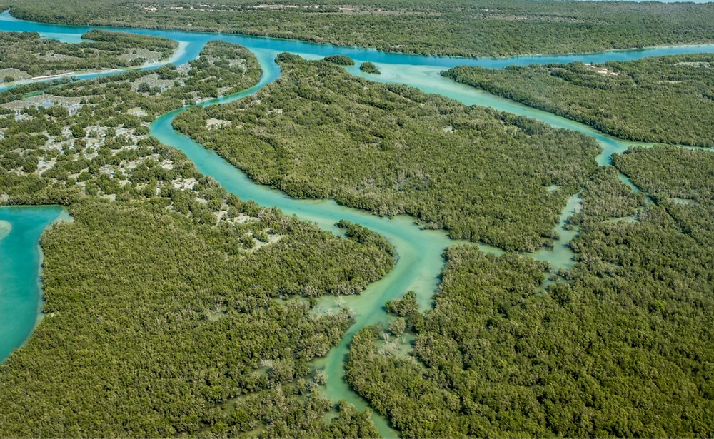 sea level, climate change, climate change mitigation, everglades restoration