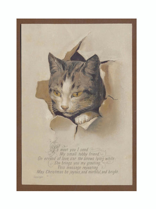 Victorian Cat Card