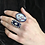 Thumbnail: French Ring Lady With A Birdcage
