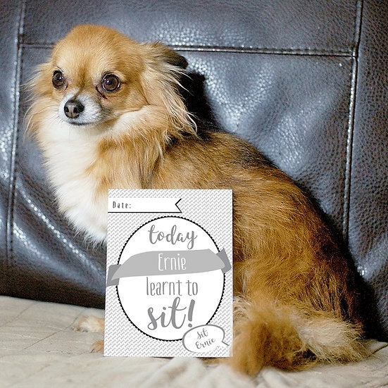 Personalised 24 x Puppy Dog Milestone Cards Memorable Moments