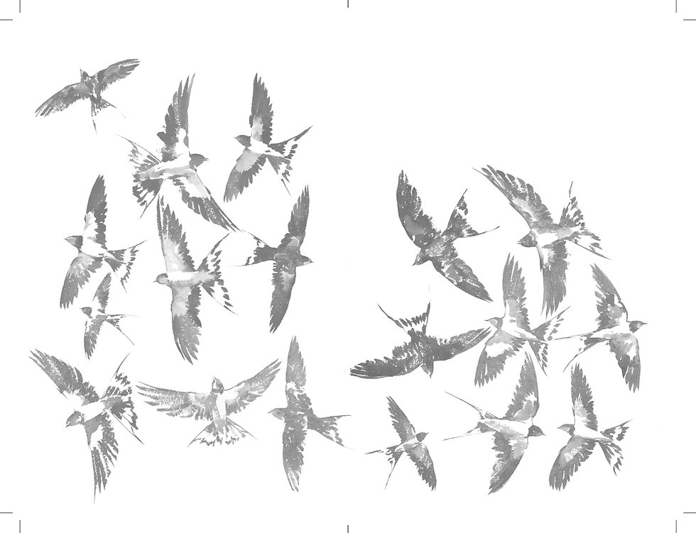 Letters to the Earth birds 9.jpg