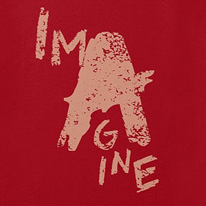 Distressed imagine t-shirt, long sleeve, tank top, hoodie, mens or womens, in many styles and colors.