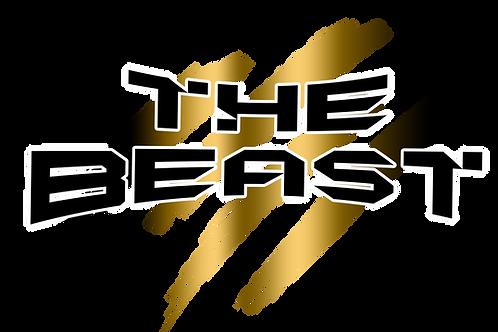 Beast Admission - Weekend Pass (Sat/Sun Incl. Finals)