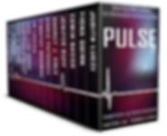 Pulse 13 Author set vector.png