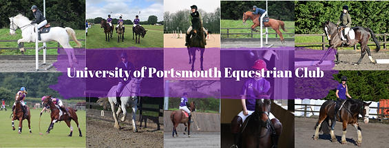 University of Portsmouth Equestrian Club
