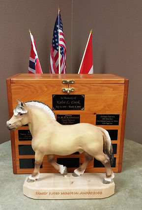 The Kelsi Cook Family Fjord Horse Award