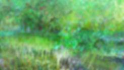 FOREST Lab_1.jpg