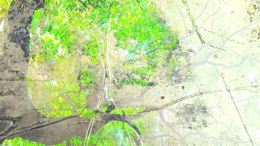 ONIRO 10_4_m.jpg