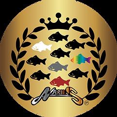 月例会優勝10回到達記念ネームプレート(通称:黒バッジ)