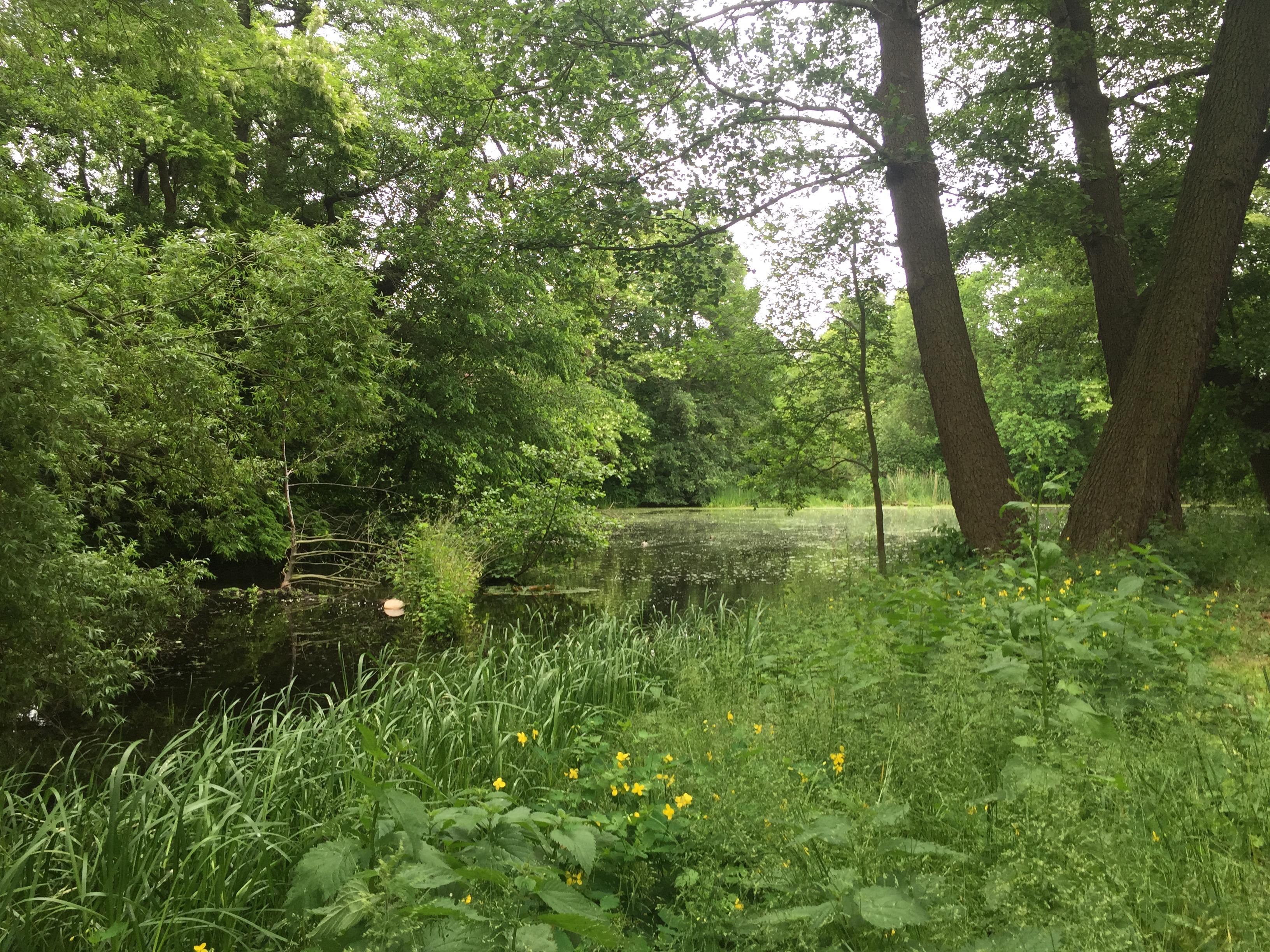 Schloss lake
