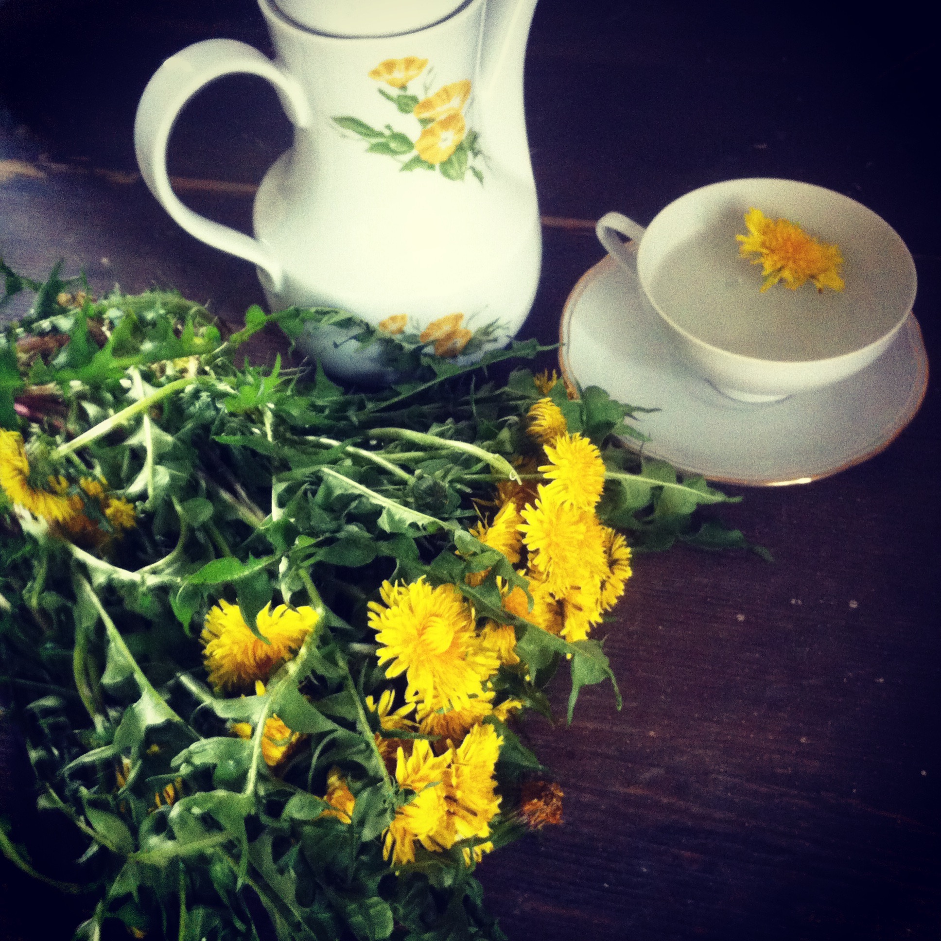 Location Germany dandelion tea