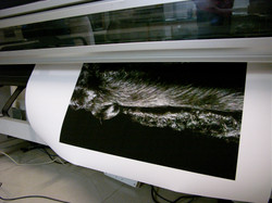 """The Big Chance"" (Print Shop)"