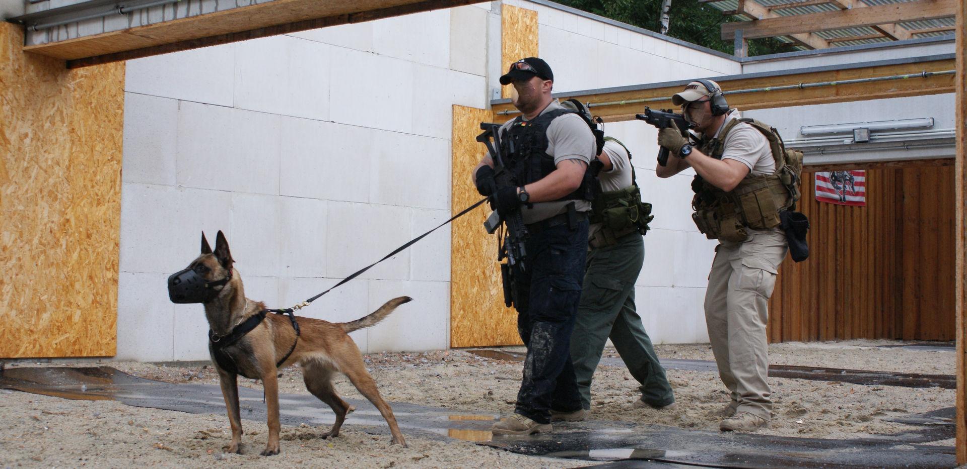Erste Hilfe für Hundeführer