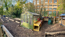 Our Allotment Story