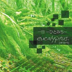 eucalyptus.[ゆうかり]
