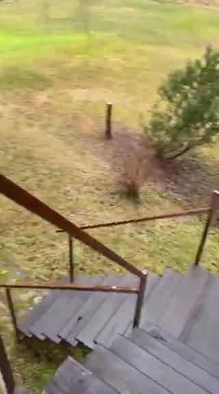 video-1612963552.mp4