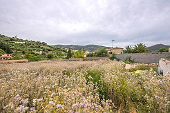 609157-land-for-sale-in-andratx-1.jpg