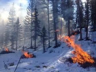 burning pile leavenworth wa
