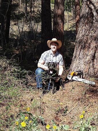 wes chelan county tree thinning.jpg