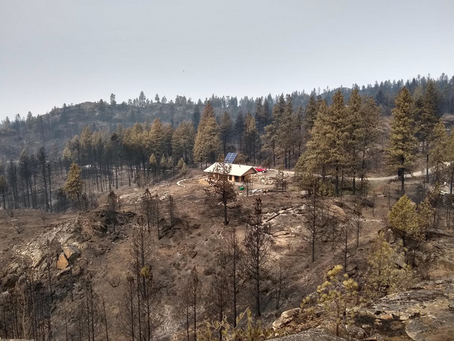 How a homeowner survived the Cold Springs Fire