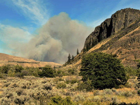 The drag racer of wildfires- Shrub Steppe