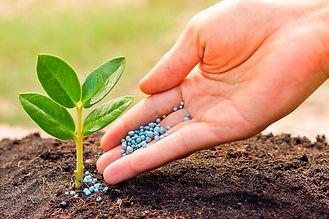 fertilizer-big.jpg