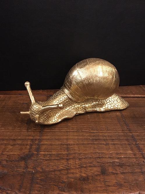 Snail gold