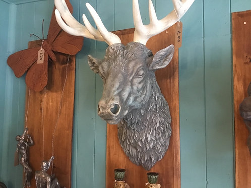Grey and white stag head