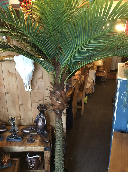 Palm tree 8ft