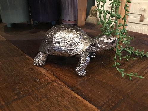 Tortoise bling 8in