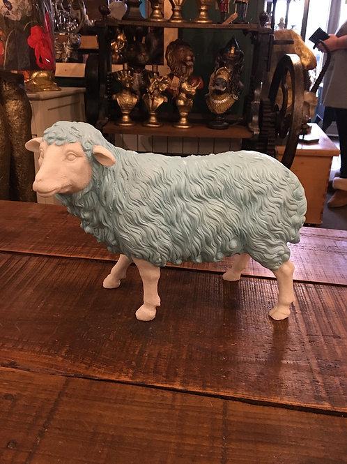 Sheep blue