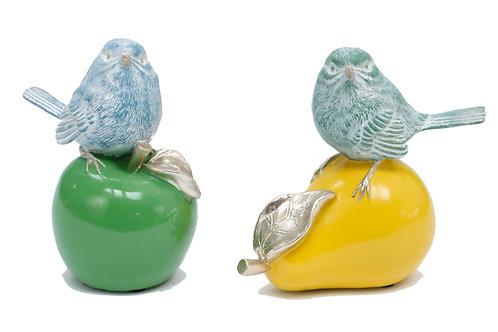 Birds on apple and pear