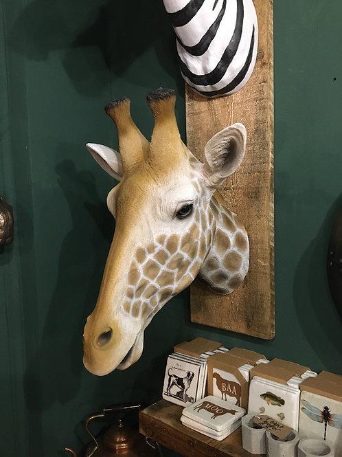 Giraffe (large life like )