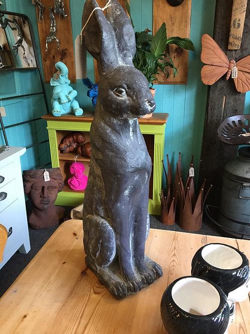 Sitting rabbit