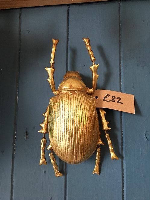 Gold med beetle