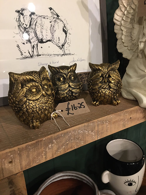 See no evil etc owls