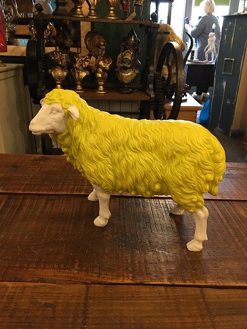 Sheep yellow