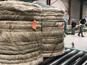 Bourbourg: L.A. Linière, une liaison capitale entre le champ de lin et la filature