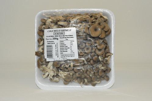Cogumelo Shimeji Cinza