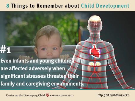 8 coisas para lembrar sobre o desenvolvimento infantil