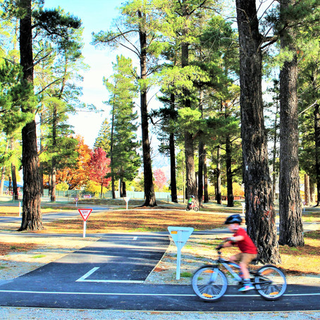 Community Board News- Bike Park Seek Board's Help