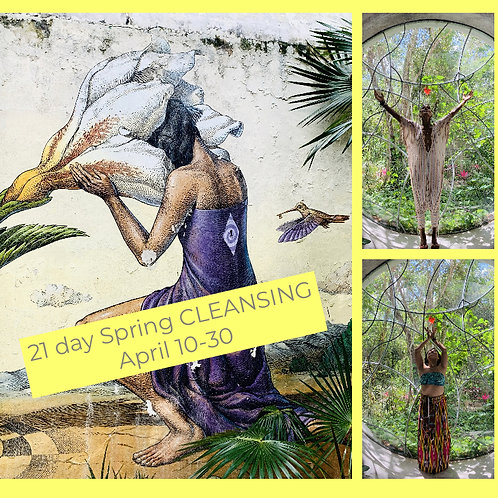 21- Day Spring Cleansing Journey