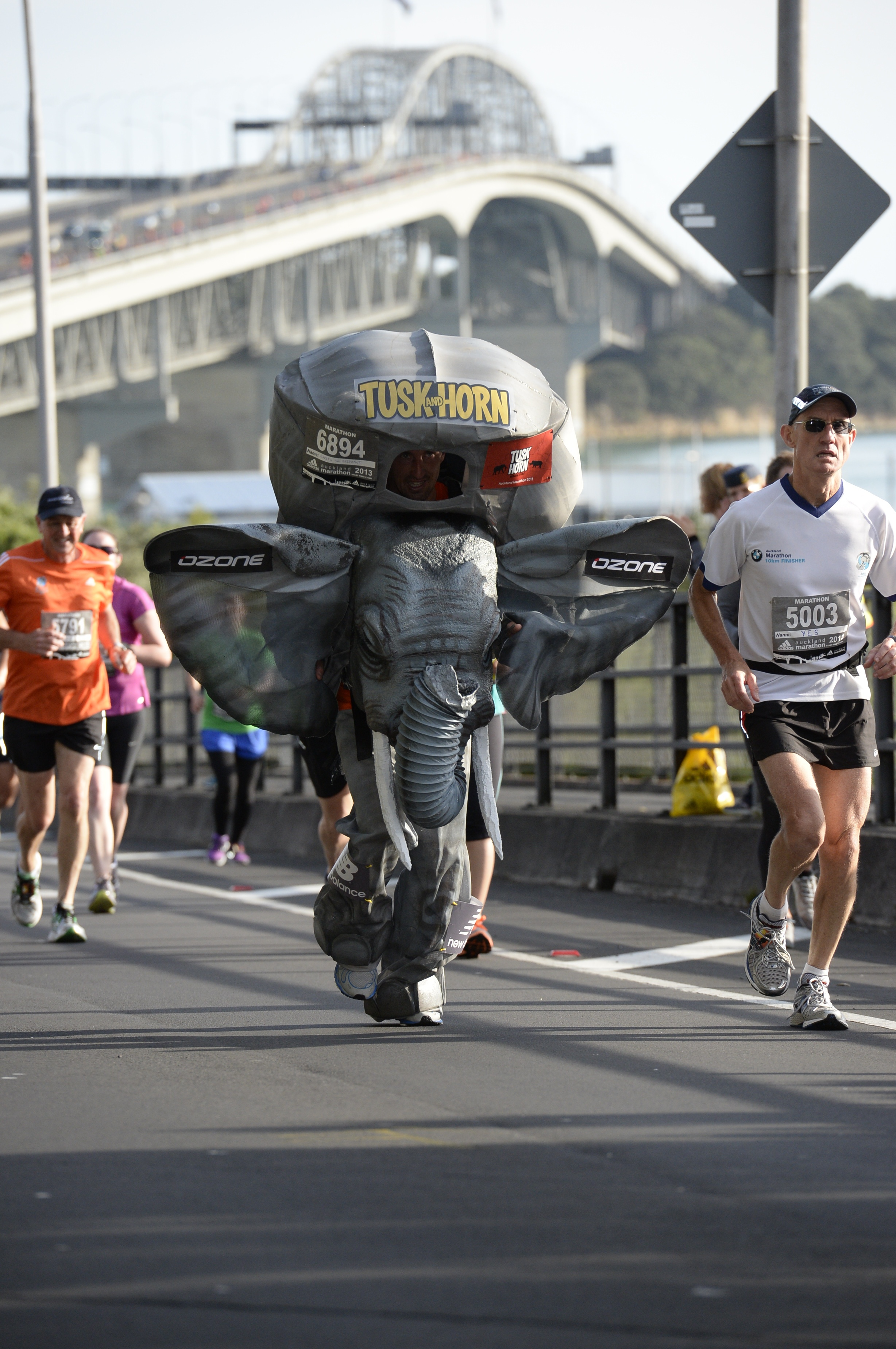 Auckland Marathon 2013