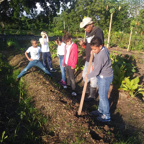 Learn about Permaculture