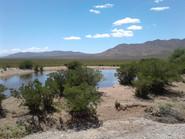 San alberto- Mendoza